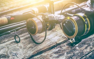 Tackle Guide: Best Spinning Reel for 2018