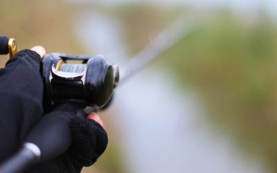 Tackle Guide: Best Baitcasting Reel for 2019