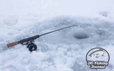 Best Ice Fishing Rods and Tip Ups