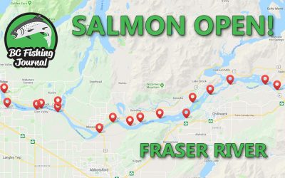 BC Salmon Openings on the Fraser River