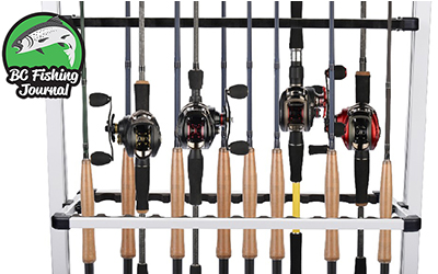 Tackle Guide: Best Casting Rods for the Money