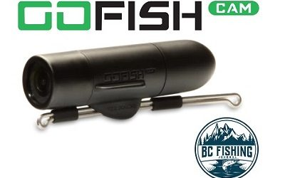 GoFish Cam Review : Best Underwater Fishing Camera